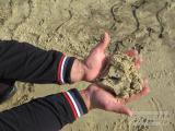 Песок в Харькове от производителя с доставкой
