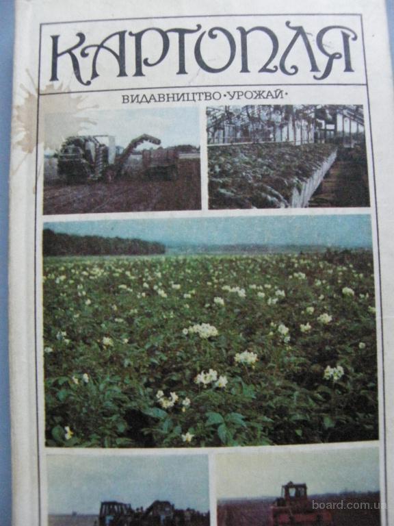 Картопля. Вітенко В.А.