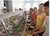 Оздоровление и отдых для детей на берегу Азовского моря