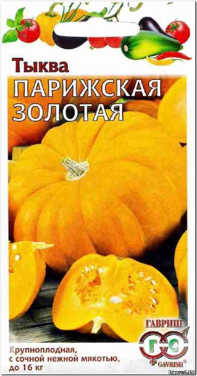 Семена тыквы «Парижская золотая» - 2 грамма