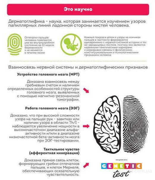 Уникальное биометрическое тестирование успеха