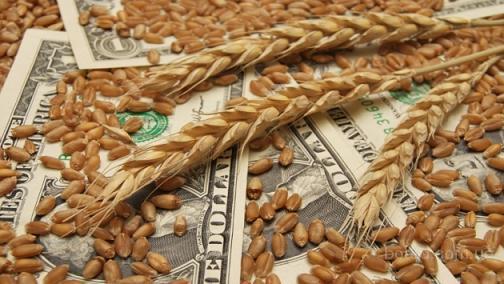 Закупаем зерновые на выгодных условиях