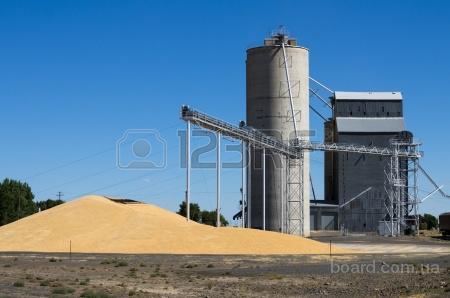 Куплю ячмень,пшеницу 2-6кл.