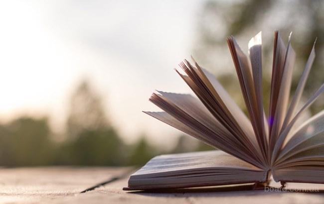 Бета-ридер, литературный коучинг