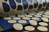 Линия для производства галетного печенья, крекеров и галлет