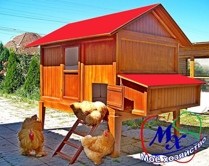Дом для кур несушек