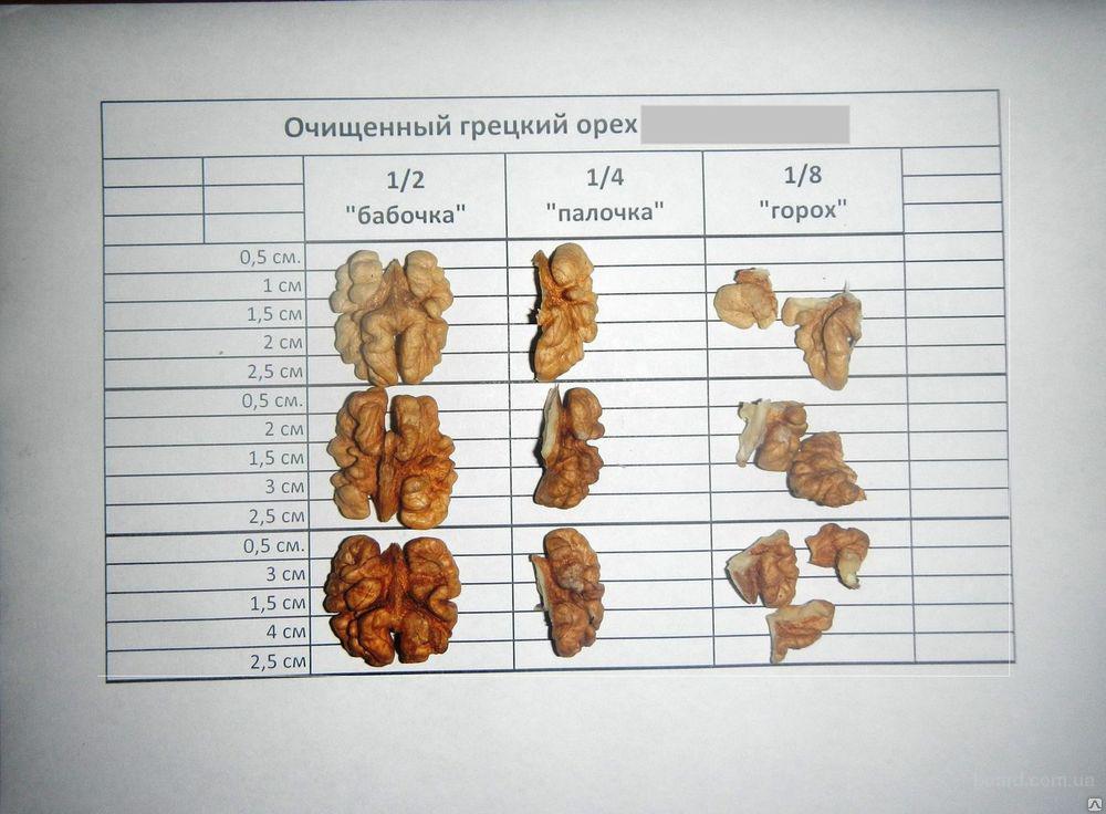 Как правильно бить орехи на бабочки в домашних условиях