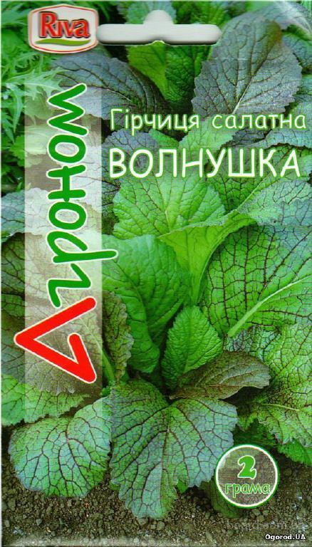 Семена горчицы салатной «Волнушка», ТМ «Агроном» - 2 грамма