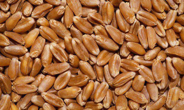 Купимо пшеницю, ячмінь