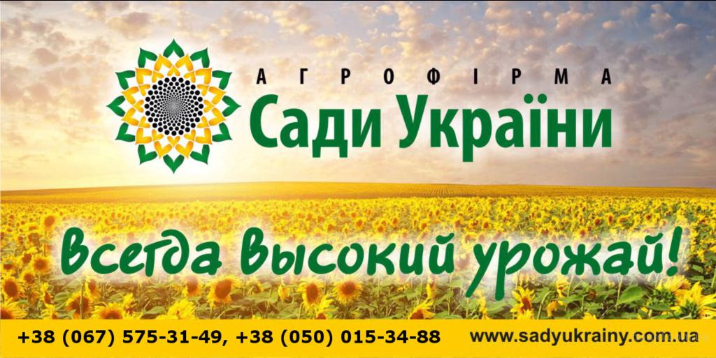 Семена, подсолнечник, кукуруза, горох, соя, пшеница