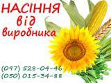 Продам семена, семена кукурузы, семена подсолнечника, посевной материал, гибриды кукурузы, гибриды подсолнечника