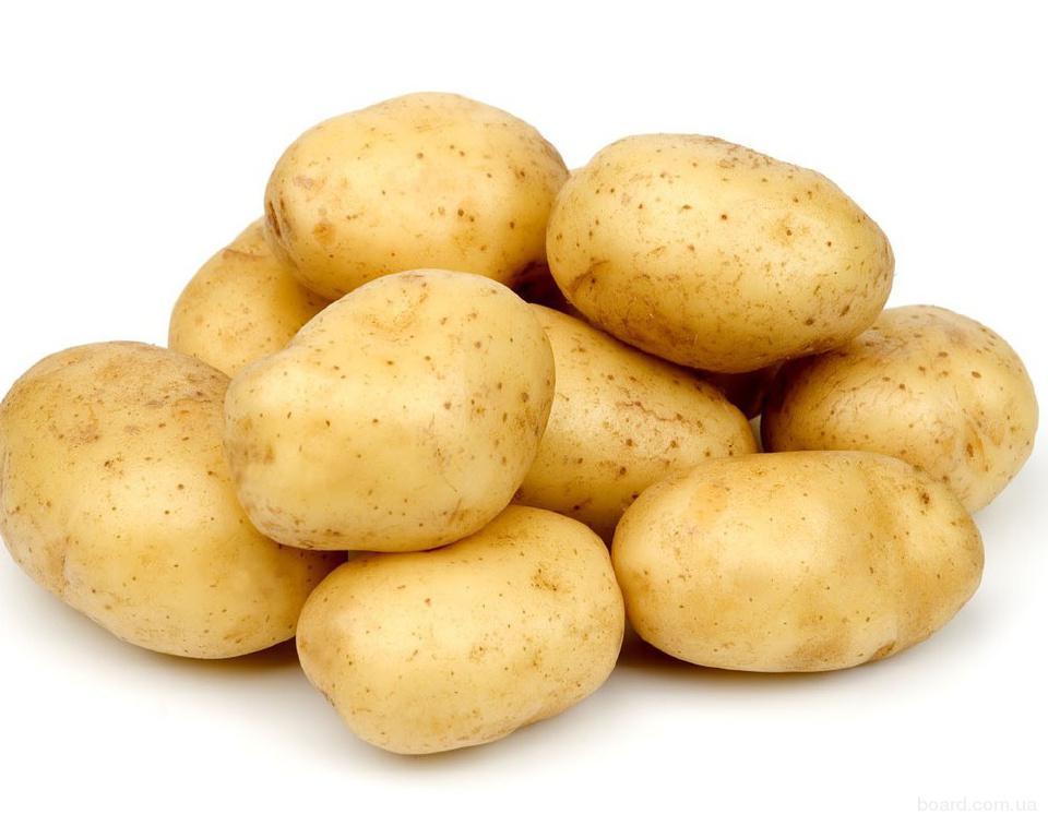 срочно! Помидор, картофель опт!