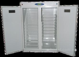 Инкубатор Nest - 3000
