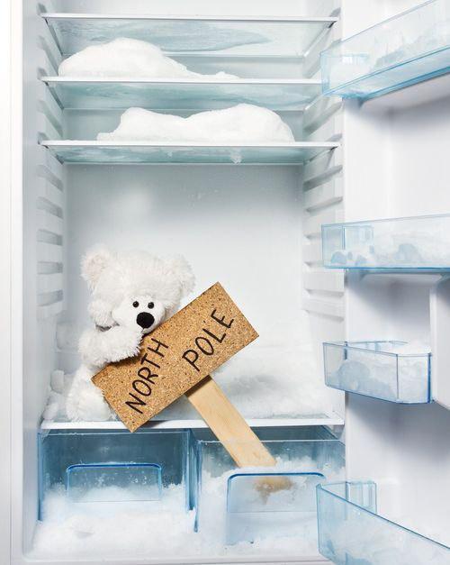 Ремонт холодильников Левый берег