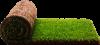 Рулонный газон.Укладка рулонного газона с авторским надзором и сервисной гарантией до 5 лет.