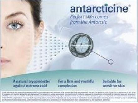 Antarcticine купить
