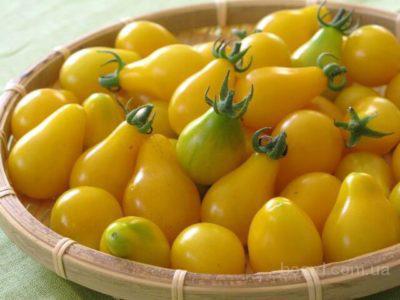 Продам семена Томат Китайская грушка желтая