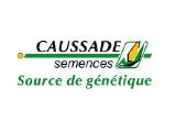 Насіння кукурудзи CAUSSADE SEMENCES