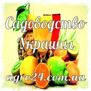 """Агробаза сельхозпредприятий/справочник """"Садоводство Украины"""""""