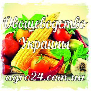 Самая актуальная база данных сельхозпредприятий/справочник (Овощеводство)
