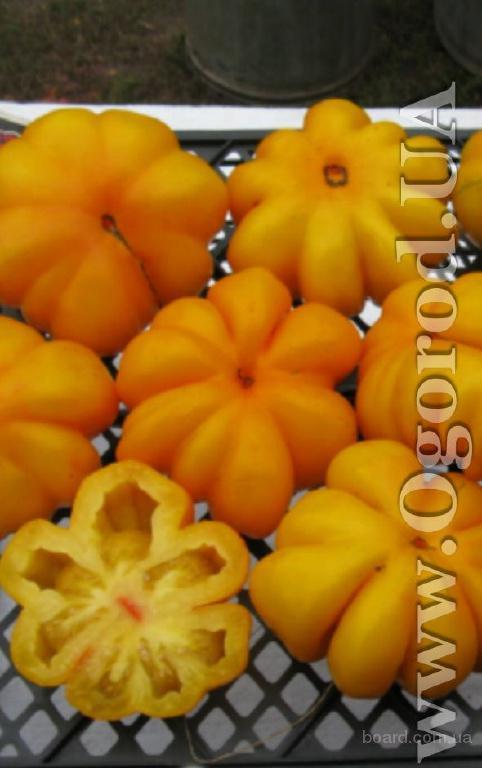 """Насіння томату """"yellow riffled"""""""