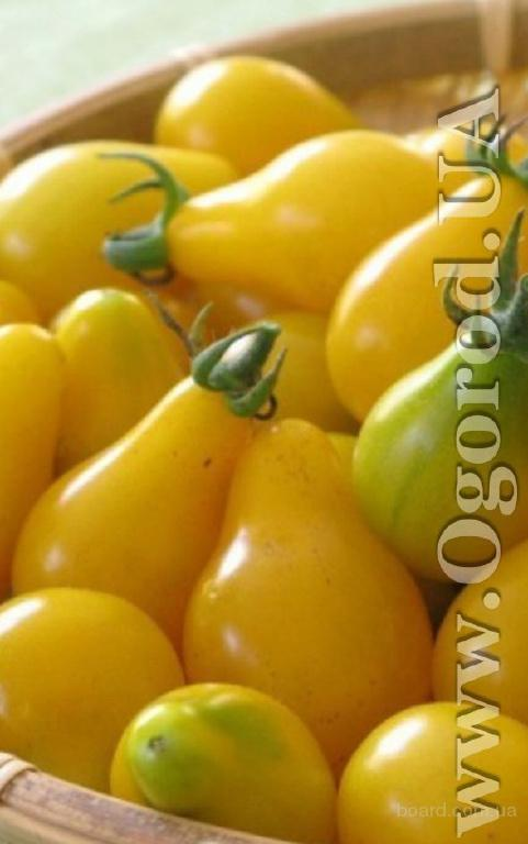 """Насіння томату """"Золотий дощ"""""""