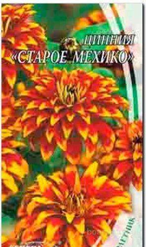 Насіння цинії «Старе Мехіко»