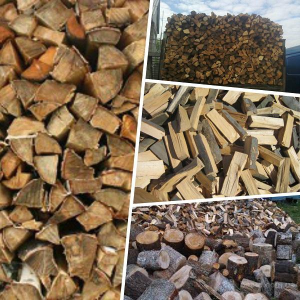 Продам дрова колотые твердых пород