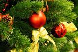 Карпаты на Новый год из Киева недорого, экскурсии Карпаты Новый год, автобусный тур Карпаты из Киева
