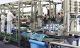 Рабочие на куриное производство женщины и мужчины. Работа в Польше