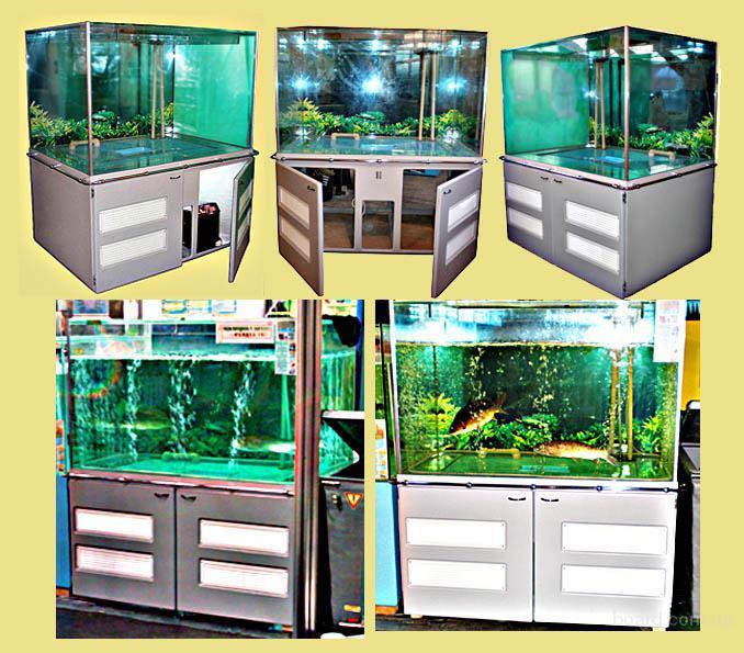 Торговый аквариум для продажи живой рыбы.