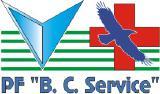 Спецдоставка BCService. Служба активного поиска и доставки медпрепаратов.
