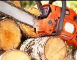 Спил-обрезка деревьев