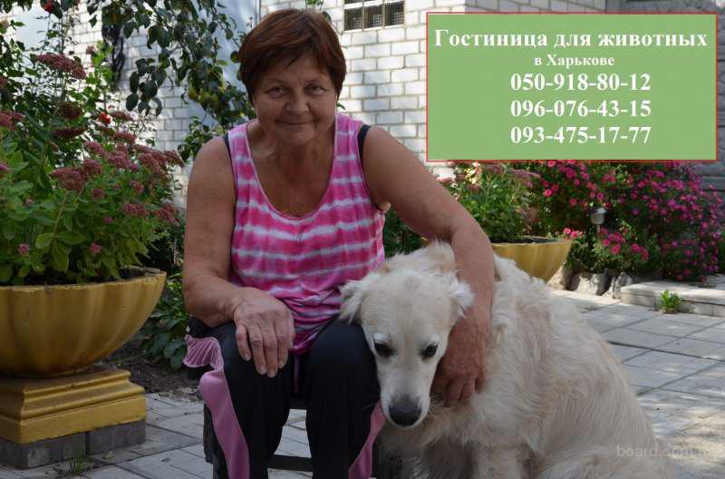 Зоогостиница для животных в Харькове.