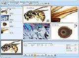 Программа BioAnalyze Advanced