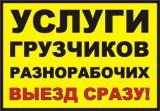 Грузовые перевозки по Харькову. Квартирные переезды. Услуги опытных грузчиков. Перевозка мебели, вещей, пианино,