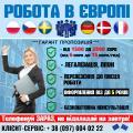 Високооплачувана робота в Польщі/Чехії/Швеції/Німеччинні/Європі