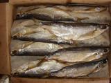 Вяленая рыба оптом 21 наименование.