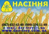 Продаём семена сои, семена сои 1 репродукции, Максус, Гримо, Аполло