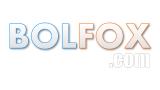 Сайт BolFox: интернет-реклама Вашего бизнеса
