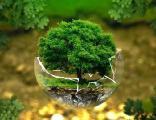 Семинар-практикум Российская неделя экологии 2017