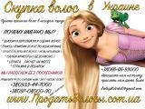 Продать волосы в Киеве Покупаем натуральные волосы в Киеве! Вы хотите продать волосы в Киеве ? Мы купим волосы