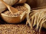Пшеница 2,3,6кл Самовывоз! Экспорт!