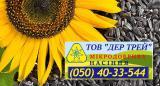 Насіння соняшнику Форвард, від насінневої команії Дер Трей