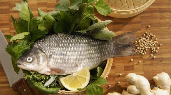 продам свежую рыбу  (продам)
