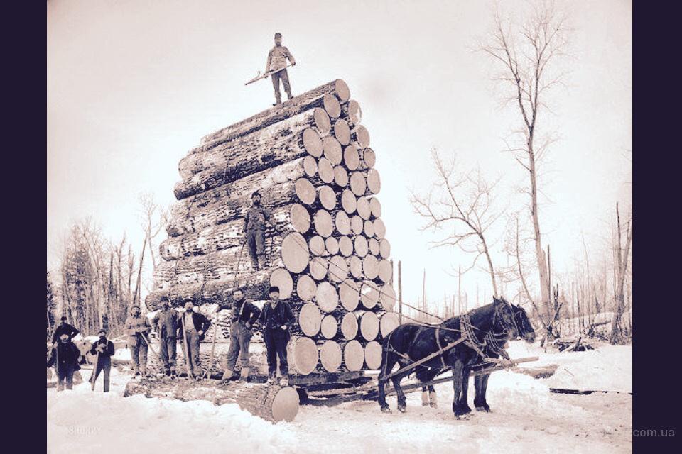 Демотиватор про дрова
