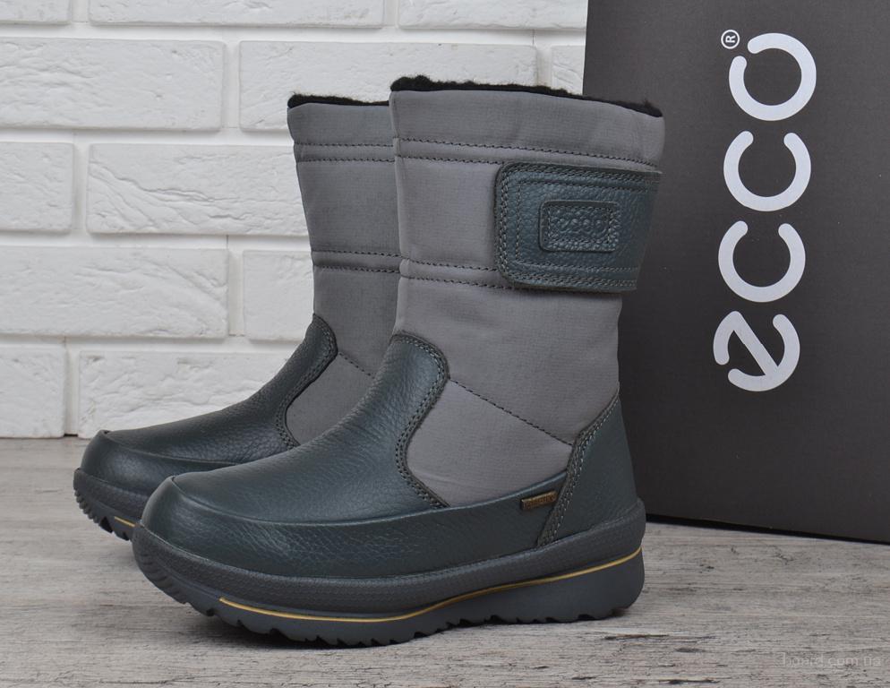 Сапоги женские зимние кожаные Ecco Gore-Tex Terra Grey - продам ... 3871c9f444b95